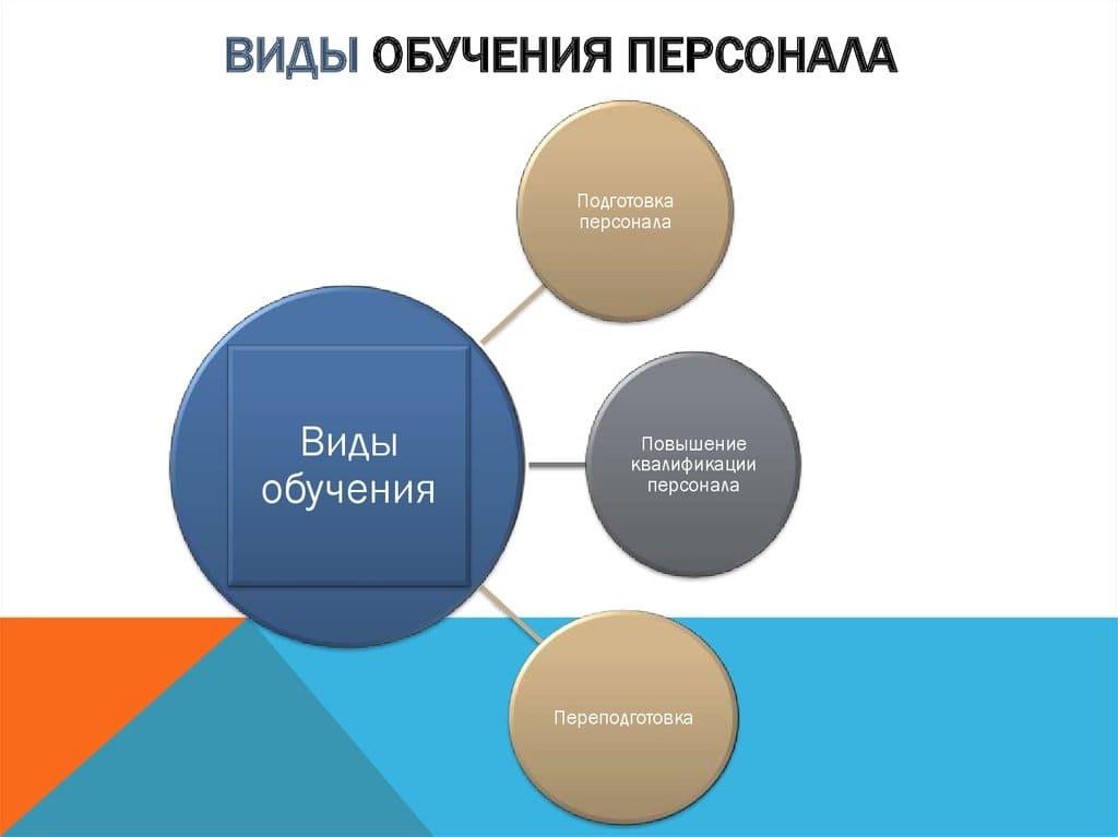 Виды обучения и подготовки персонала